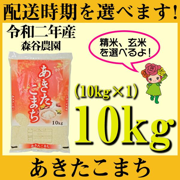 【ふるさと納税】 米 10kg あきたこまち 新米 精米 玄米 令和2年産 山形県村山市産 送料無料