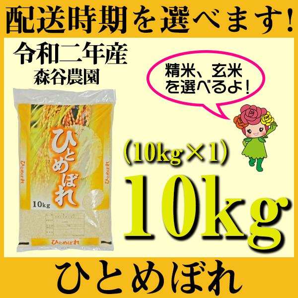 【ふるさと納税】 米 10kg ひとめぼれ 新米 精米 玄米 令和2年産 山形県村山市産 送料無料
