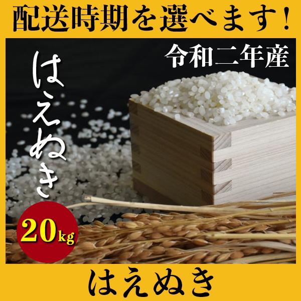 【ふるさと納税】 米 20kg 5kg×4 はえぬき 新米 精米 玄米 令和2年産 2020年産 山形県村山市産 送料無料 先行予約 020-d93