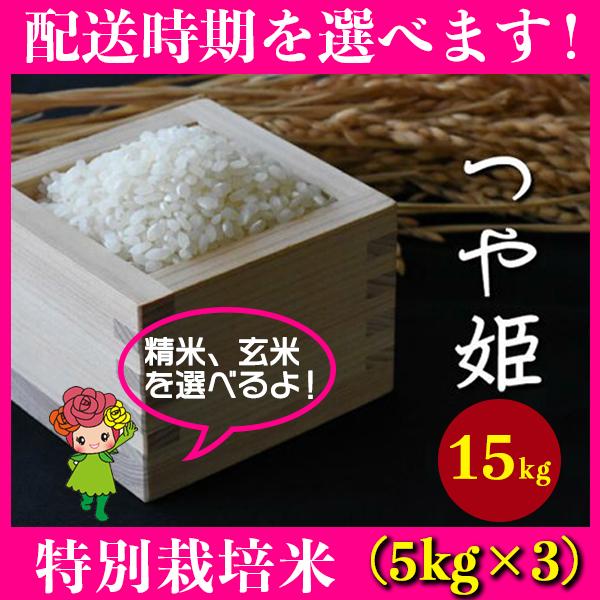 【ふるさと納税】 米 15kg 5kg×3 つや姫 特別栽培米 精米 玄米 令和元年産 山形県村山市産 送料無料