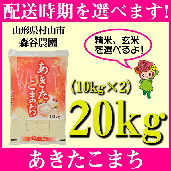 【ふるさと納税】 米 20kg 10kg×2 あきたこまち 精米 玄米 令和元年産 山形県村山市産 送料無料