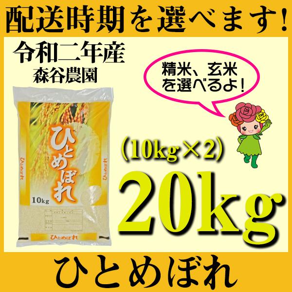 【ふるさと納税】 米 20kg 10kg×2 ひとめぼれ 新米 精米 玄米 令和2年産 山形県村山市産 送料無料