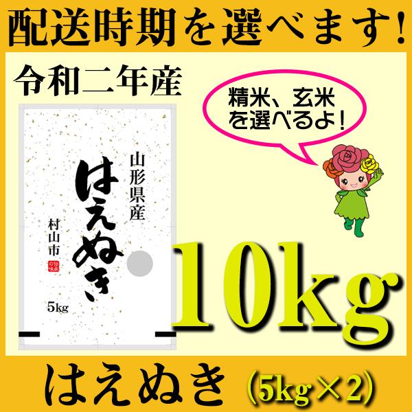【ふるさと納税】 米 10kg 5kg×2 はえぬき 新米 精米 玄米 令和2年産 2020年産 山形県村山市産 送料無料 先行予約