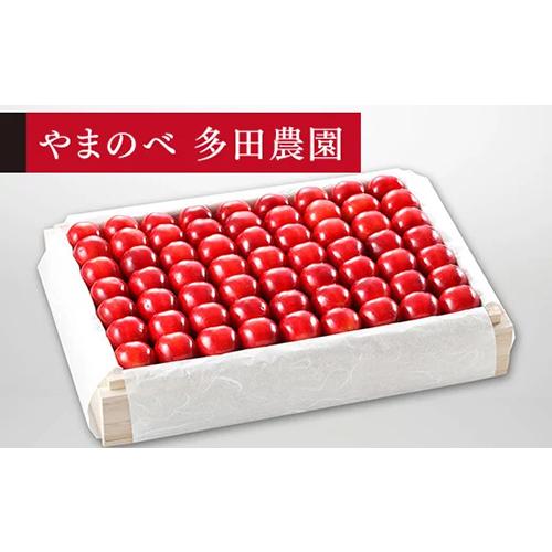 【ふるさと納税】特選「真夏のルビー紅姫」桐箱詰 2Lサイズ以上 約1,100g「やまのべ多田農園」