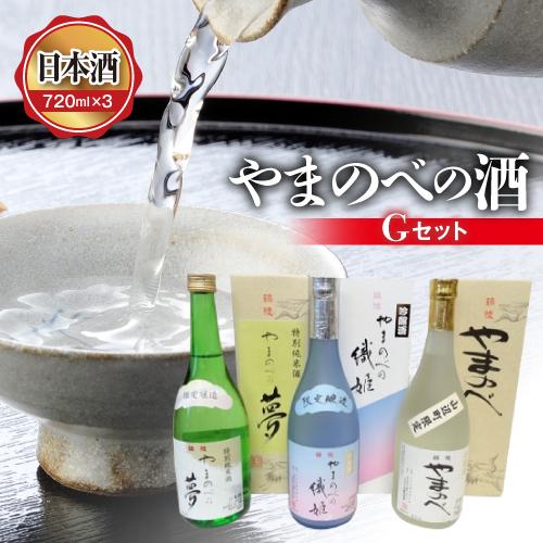 【ふるさと納税】山形県産 やまのべの酒 Gセット 日本酒 720ml×3