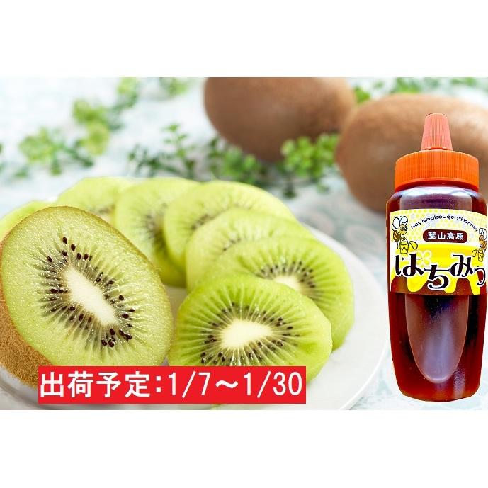 【ふるさと納税】1月 山形県産キウイフルーツ約2kg ハチミツ300g 【果物詰合せ・フルーツ・蜂蜜・はちみつ・果物類・詰合せ】 お届け:2021年1月7日~2021年1月30日