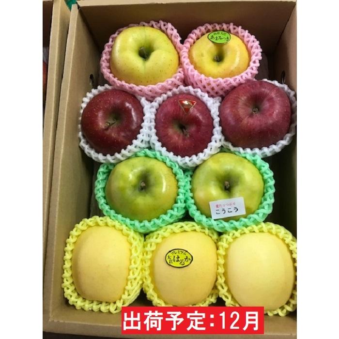 【ふるさと納税】12月 贈答用旬のりんご詰合せ約3kg(サンふじ確約3種以上)特秀~秀 大江町産 【果物類・林檎・果物類・フルーツ・詰合せ】 お届け:2020年12月1日~2020年12月23日