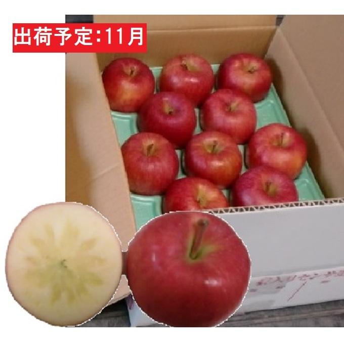 【ふるさと納税】11月 訳ありこうとく約4.5kg 大江町産 【果物類・林檎】 お届け:2020年11月1日~2020年11月15日