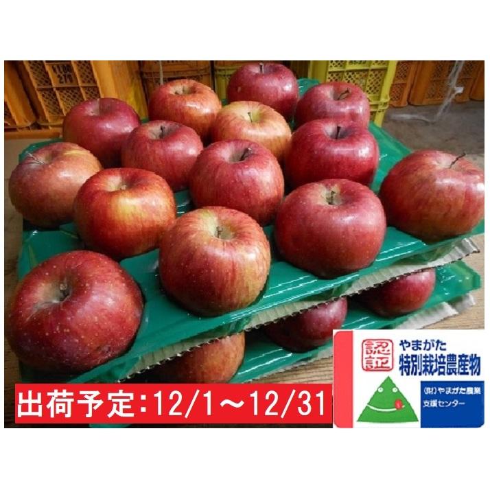 【ふるさと納税】12月 特別栽培 訳ありサンふじ約10kg 大江町産  【果物類・林檎・りんご・リンゴ】 お届け:2020年12月1日~2020年12月31日