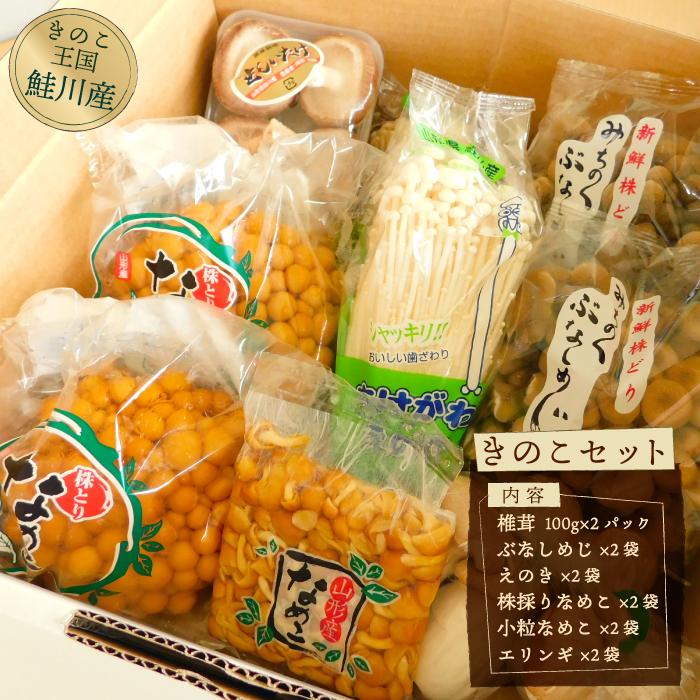 ふるさと納税 きのこ王国 正規認証品!新規格 買い物 鮭川村産 S きのこセット