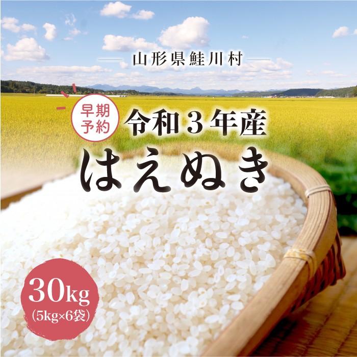 ふるさと納税 《令和3年産米早期予約》 鮭川村産 価格 はえぬき30kg 新品未使用正規品 5kg×6袋