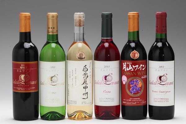 【ふるさと納税】月山ワイン6本セット