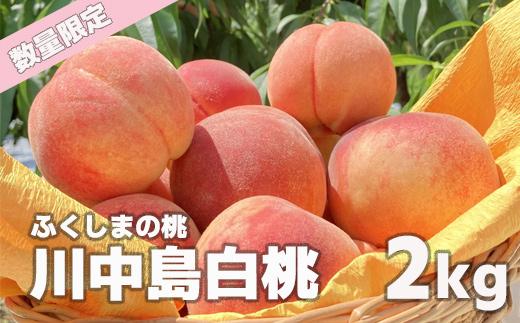ふくしまの桃 ふるさと納税 捧呈 先行予約 No.0878 開店祝い もも 5玉~7玉 2kg 川中島白桃