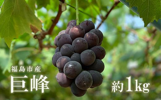 フルーツ王国ふくしまの甘い 春の新作 果物 ふるさと納税 商舗 No.1297 約1kg 巨峰 ぶどう