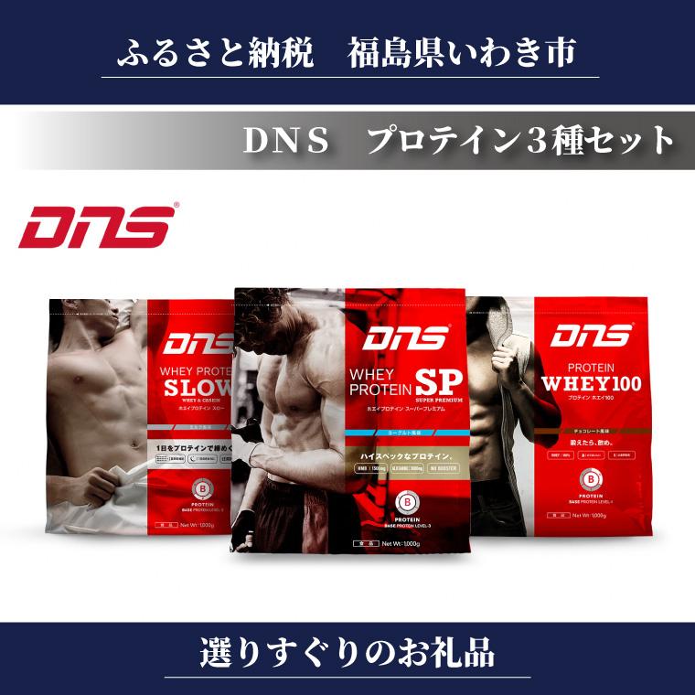 【ふるさと納税】DNS プロテイン3種セット