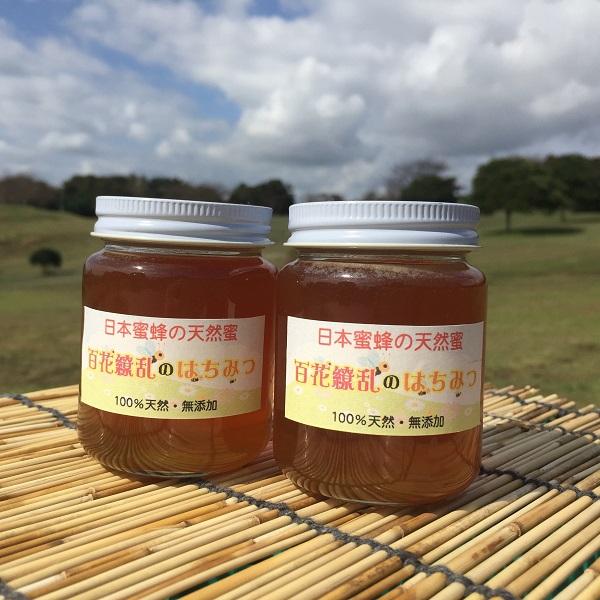 ふるさと納税 永遠の定番モデル 日本みつばちの天然蜜 最安値 160g×2本