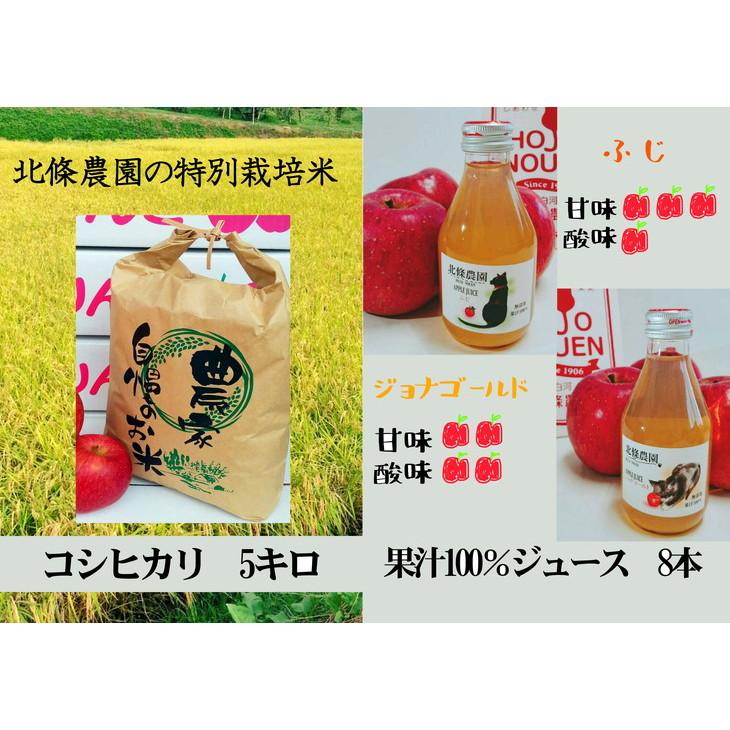 【ふるさと納税】北條農園の林檎ジュースとお米5kg