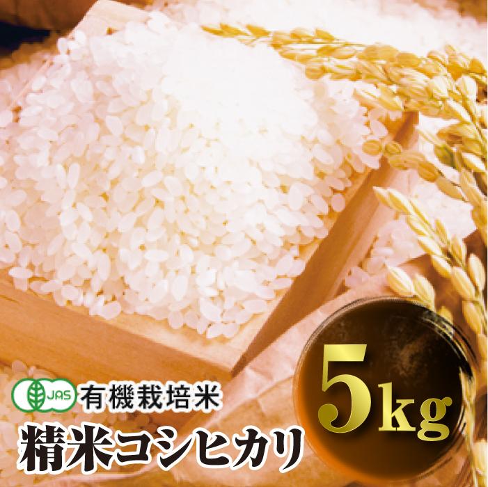 ふるさと納税 令和3年産 JAS認定 有機栽培米 精米 5kg コシヒカリ 送料無料でお届けします 全品最安値に挑戦