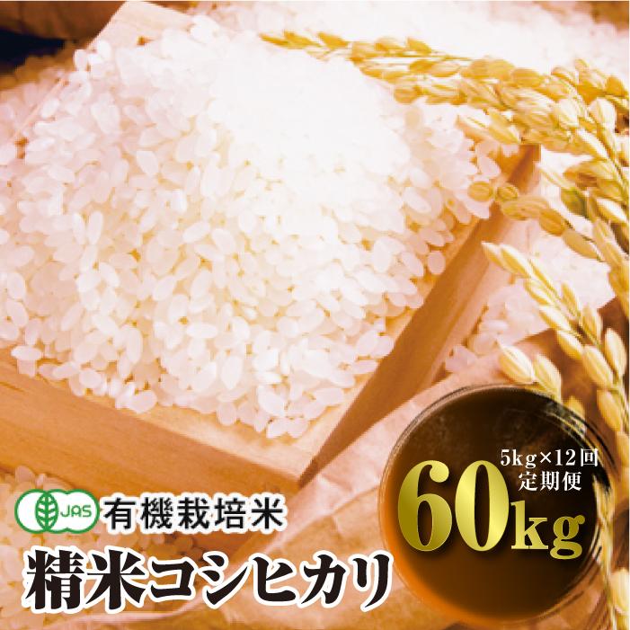 ふるさと納税 令和3年産 定期便 JAS認定 有機栽培米 5kg×12回 コシヒカリ 1カ月に1回 直営限定アウトレット 精米 大好評です