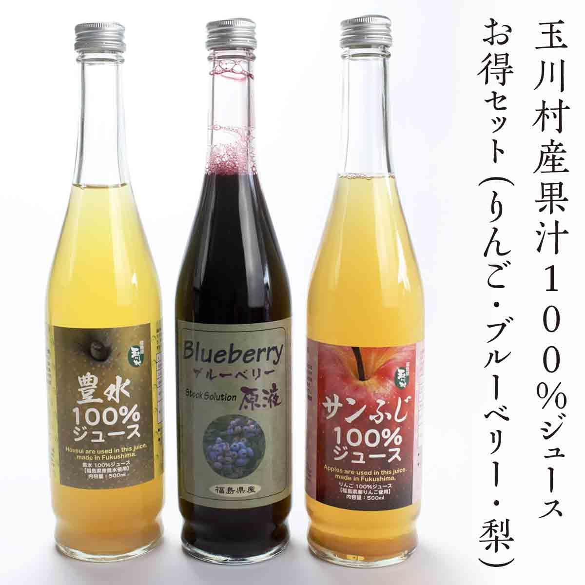【ふるさと納税】 FT18-020 玉川村産果汁100%ジュースお得セット(りんご・ブルーベリー・梨)