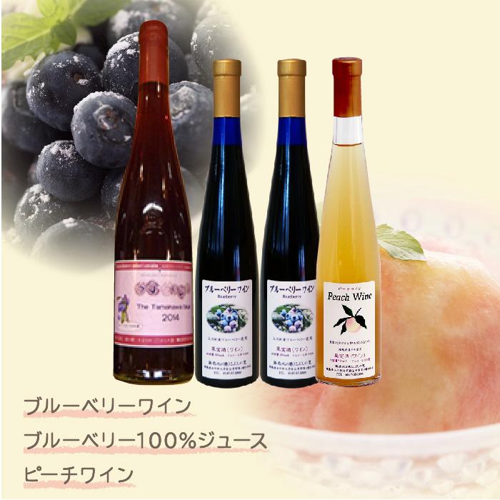 【ふるさと納税】FT18-022 福島県 玉川村 フルーツワインギフトセット