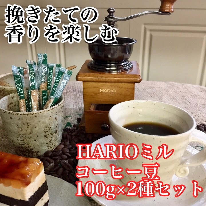 【ふるさと納税】AK13_HARIOコーヒーミルスタンダード&直火自家焙煎コーヒー豆100g×2種 ハリオ/珈琲/ミル付き/