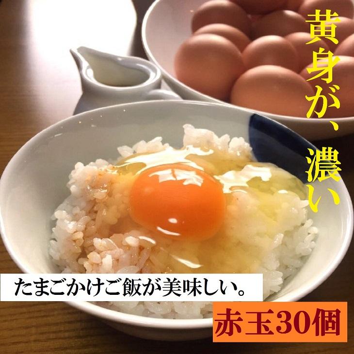 ふるさと納税 AG03_江原ファーム 体に優しい地養卵 30個 生みたて 卸売り たまご 新鮮 セールSALE%OFF タマゴ