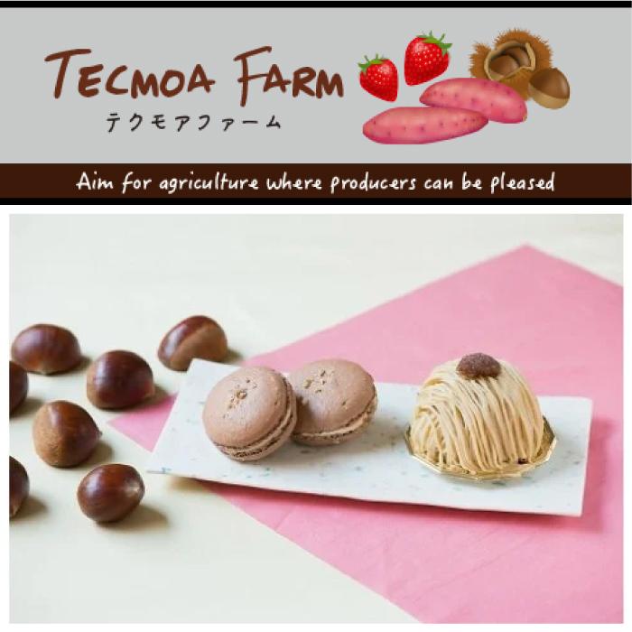 茨城県産の栗を使用した 風味豊かで甘さ控えめのペーストです ふるさと納税 BT-2 和栗ペースト 栗スイーツ作りに最適 笠間市産 メーカー再生品 1kg 卓抜