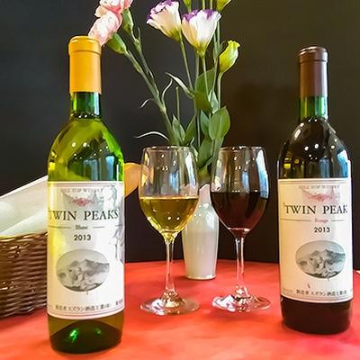 つくば産ブドウ100%使用 人気の赤ワインと白ワインの2本をセットで 希少 ふるさと納税 ツインピークス 希望者のみラッピング無料 1043815 2013年赤 白2本セット