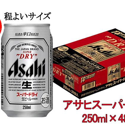 【ふるさと納税】程よく飲みたい方に!!アサヒスーパードライ250ml缶×48本(2ケース) 【お酒・ビール】