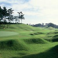 【ふるさと納税】平日限定1組4名様ゴルフプレー代サービス(霞南ゴルフ倶楽部)