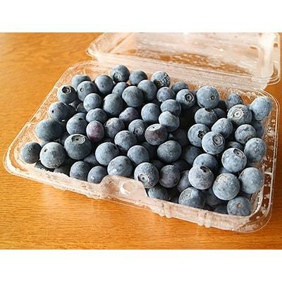 栽培期間農薬を使用しておらず、減肥料栽培のため、安心して召し上がっていただけます。 【ふるさと納税】横田さん家の冷凍完熟ブルーベリー 4パック【1085839】