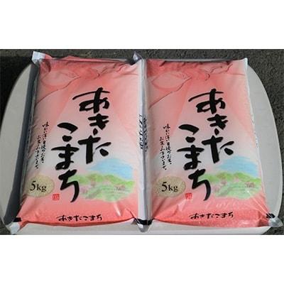 【ふるさと納税】稲敷産あきたこまち 計10kg(5kg×2袋)【1098180】