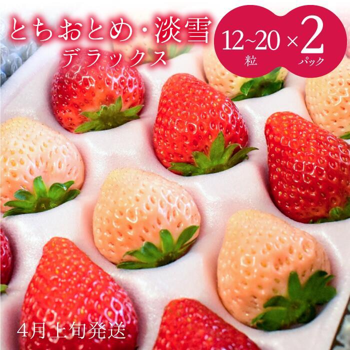 【ふるさと納税】No.439 【4月発送】いちご 紅白(とちおとめ·淡雪)DX 2箱(12~20粒×2)苺 イチゴ 完熟 フルーツ 果物 スイーツ 贈答用 ギフト お歳暮 送料無料