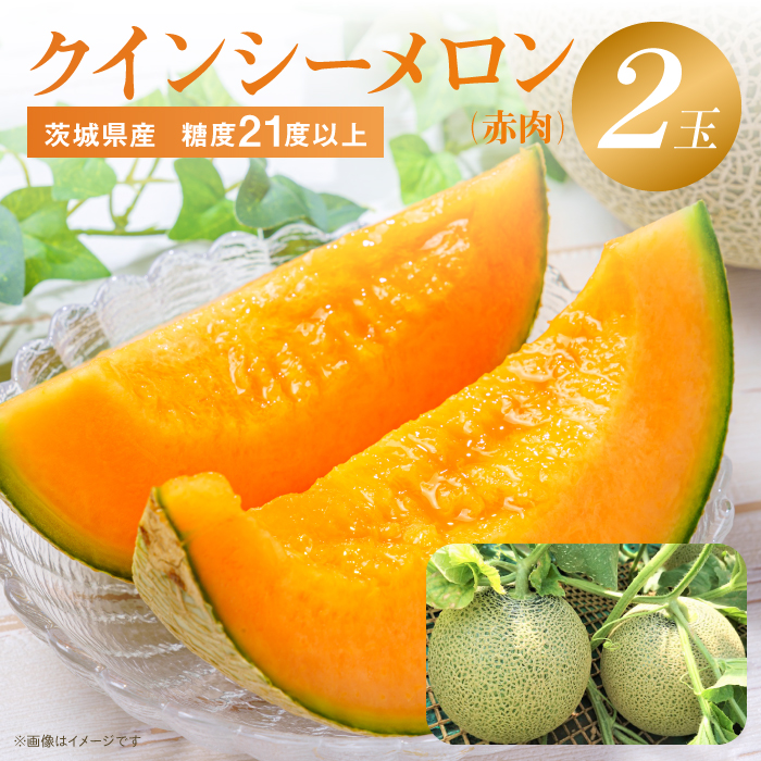 茨城県鉾田市 【ふるさと納税】No.410 クインシーメロン(赤肉)...
