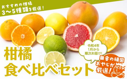 ふるさと納税 田舎の頑固おやじが厳選 豪華な 柑橘はこれだっぺセット 令和4年1月から順次お届け フルーツ 詰合せ 市場 ギフト 果物