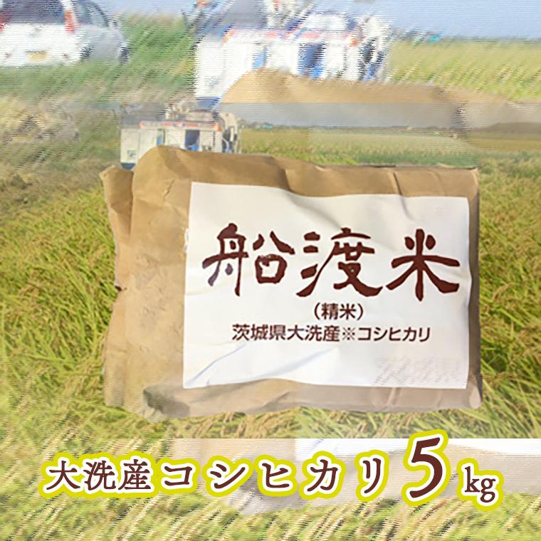 ふるさと納税 AZ005_舟渡米 大洗産コシヒカリ 5kg ◆セール特価品◆ ギフ_包装