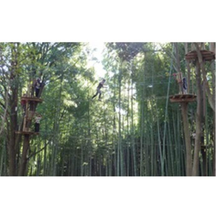 【ふるさと納税】森の空中散歩!フォレストアドベンチャー・おおひら 体験チケット(上級コース、18歳以上)