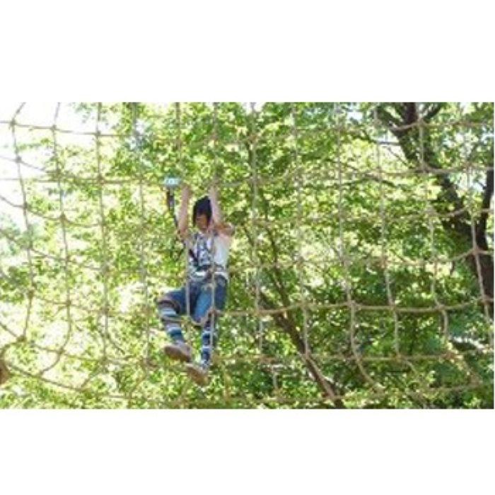 【ふるさと納税】森の空中散歩!フォレストアドベンチャー・おおひら 体験チケット(上級コース、17歳以下)