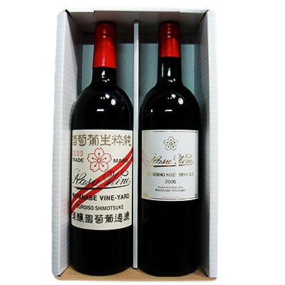 【ふるさと納税】750ml赤ワイン2本セット【1000180】