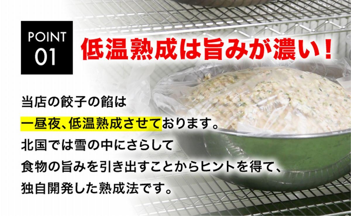 【ふるさと納税】スタミナ健太餃子 960g(48個)