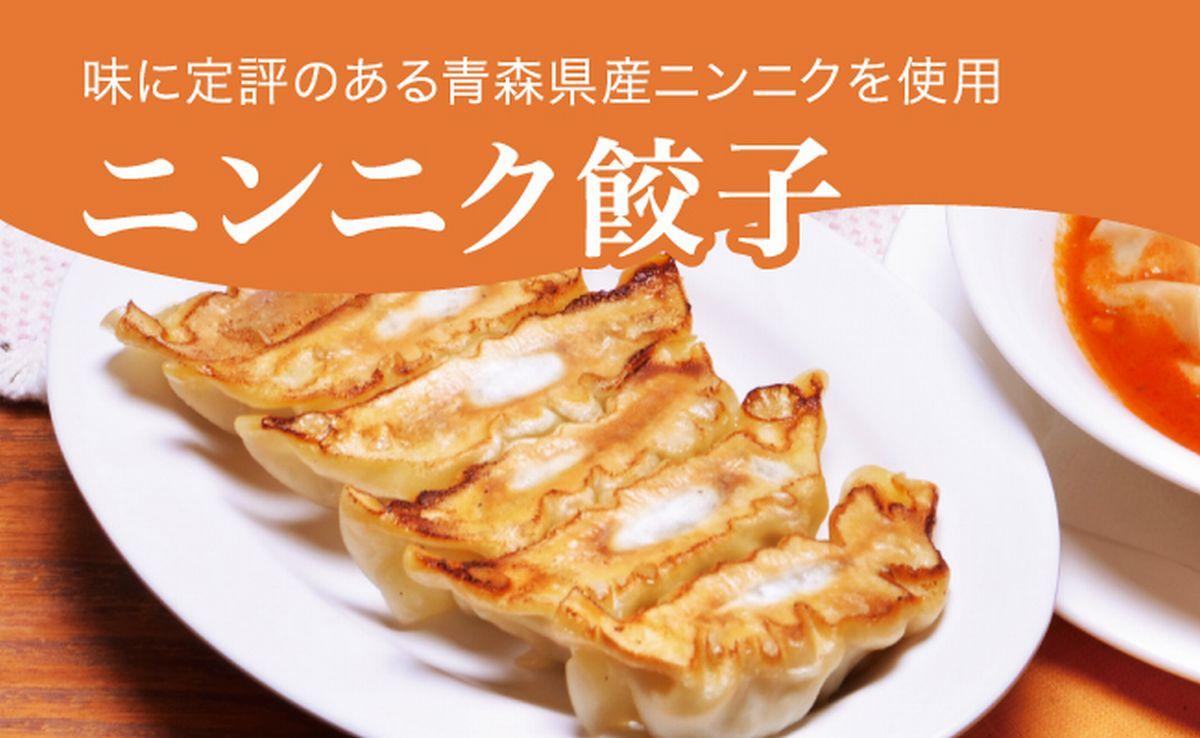 【ふるさと納税】ニンニク餃子 960g(48個)