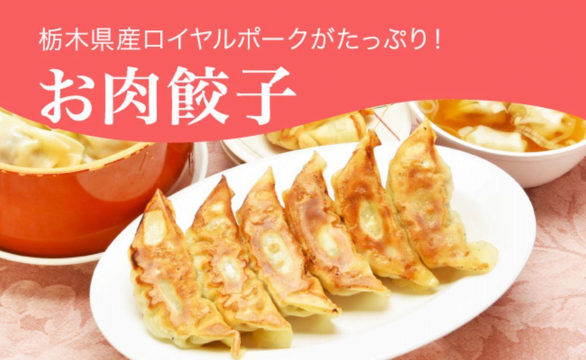 【ふるさと納税】お肉餃子 960g(48個)