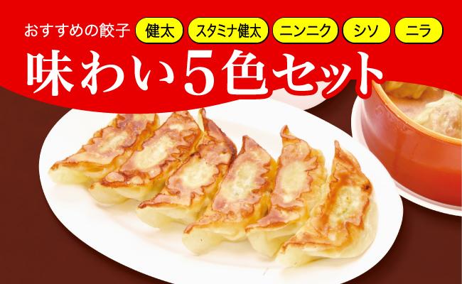 【ふるさと納税】味わい5色セット(餃子5種) 800g