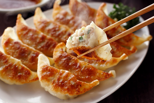 【ふるさと納税】とんきっき肉餃子 90個(計1.6kg)