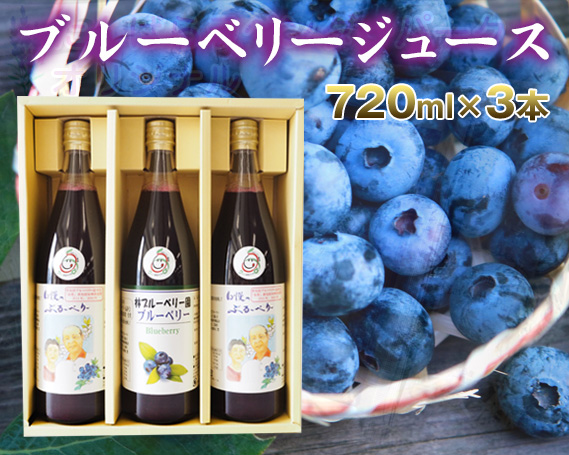 【ふるさと納税】No.025 【3本セット】40%果汁入りブルーベリージュース720ml