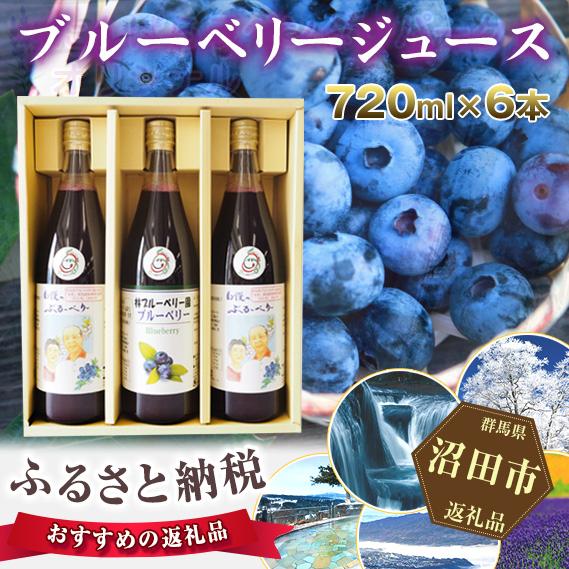 【ふるさと納税】No.041 【6本セット】40%果汁入りブルーベリージュース720ml