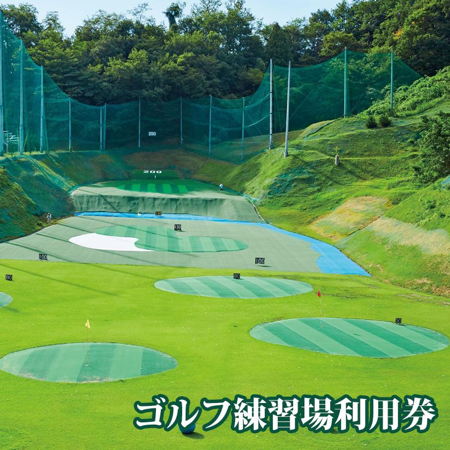 【ふるさと納税】ゴルフ練習場利用券 4545球分