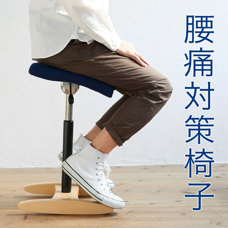 【ふるさと納税】腰痛対策椅子 バランス シナジー(カバー付き)
