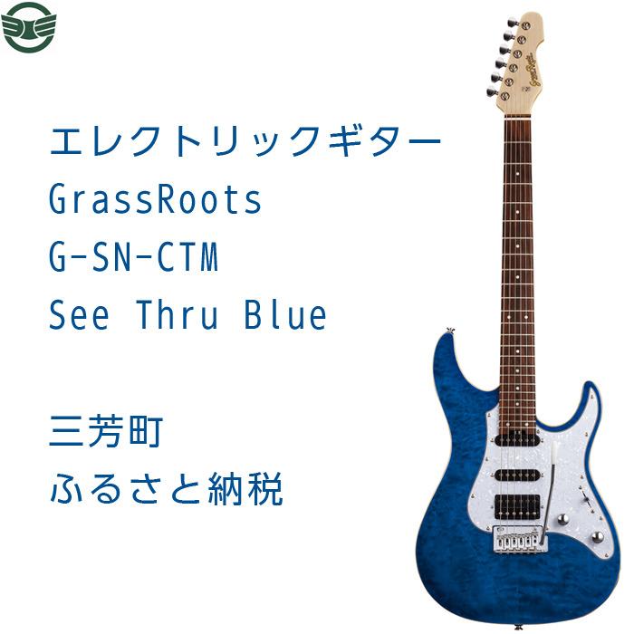 ふるさと納税 世界の人気ブランド エレクトリックギター 2020秋冬新作 G-SN-CTM Thru See Blue